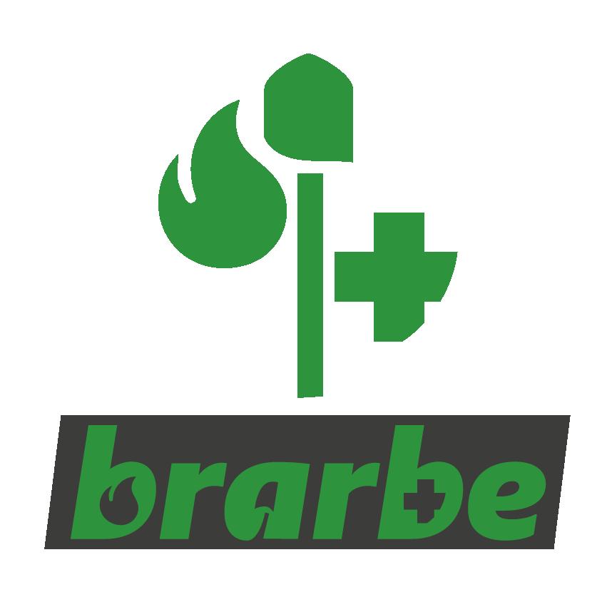 Brarbe Logo Zeichenfläche 1
